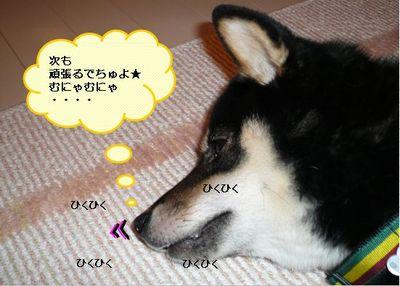 Ws000026_2